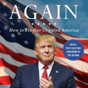 booksreddit.com:Great Again: How to Fix Our Crippled America