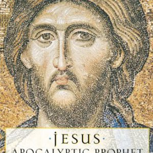 booksreddit.com:Jesus: Apocalyptic Prophet of the New Millennium