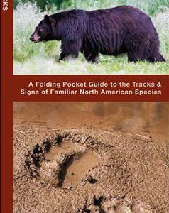 booksreddit.com:Animal Tracks: A Folding Pocket Guide to the Tracks & Signs of Familiar North American Species (P...