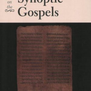 booksreddit.com:Social-Science Commentary on the Synoptic Gospels