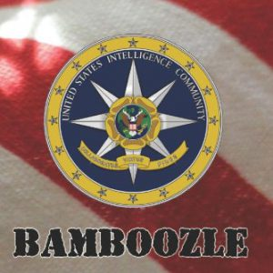 booksreddit.com:The Big Bamboozle: 9/11 and the War on Terror