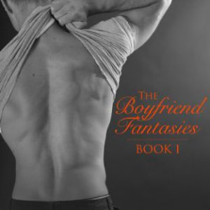 booksreddit.com:The Boyfriend Fantasies: Book 1