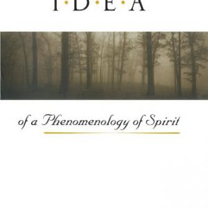 booksreddit.com:Hegel's Idea of a Phenomenology of Spirit